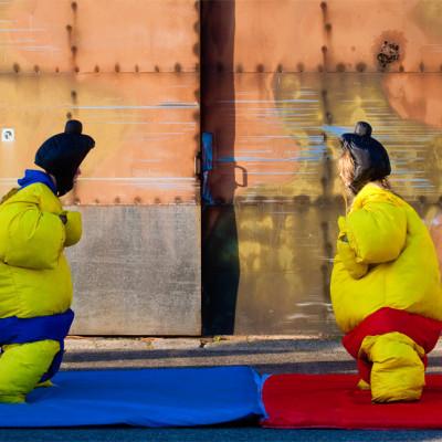 2 sumopakken voor diegenen die graag worstelen in het leven.